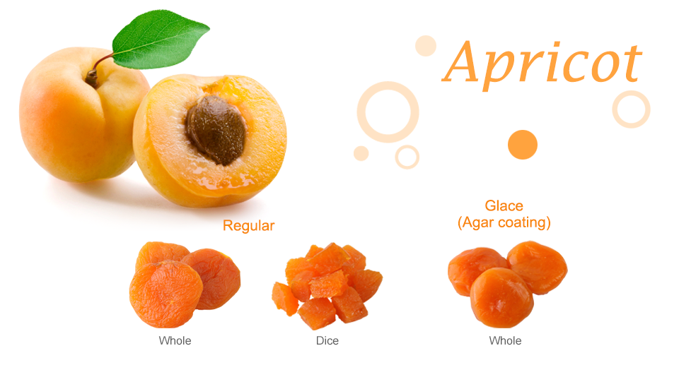 Apricot Dried Fruit