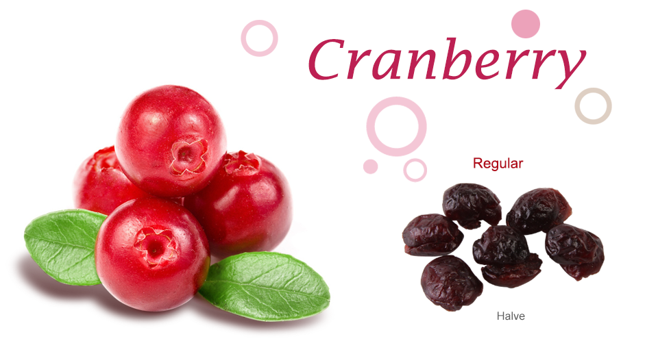Cranberry Dried Fruit